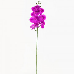 FLOWER HARMONY Orchidea  88 cm