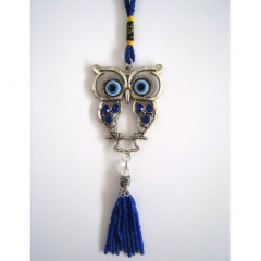Allahové modré oko-sova