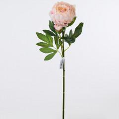 FLOWER HARMONY Pivónia  ružovo-biela