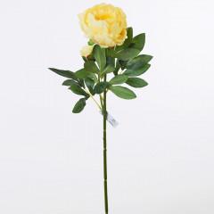 FLOWER HARMONY Pivónia žltá