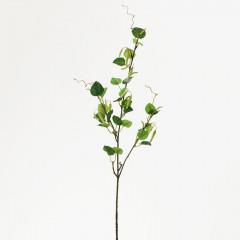 FLOWER HARMONY Vetva breza 71 cm